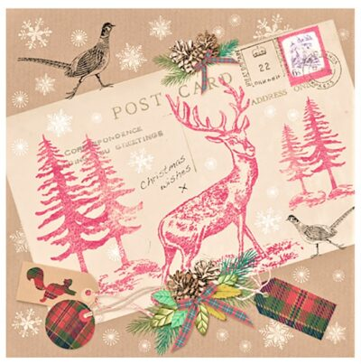 Napkins (pack of 20)Stag with Postcard - PJ303675