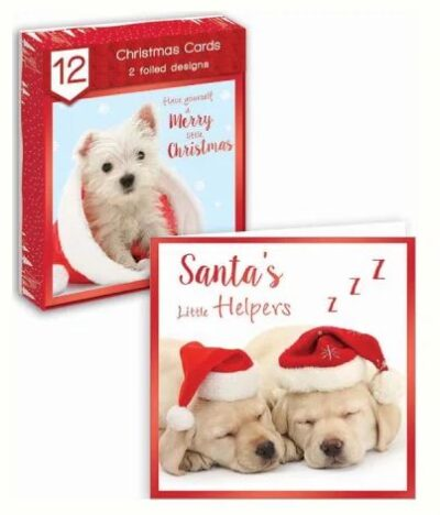 Puppy Square Christmas Cards - Pack of 12 0260970
