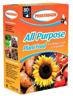 Phostrogen All Purpose Soluble Plant Food x80 Cans 4970785